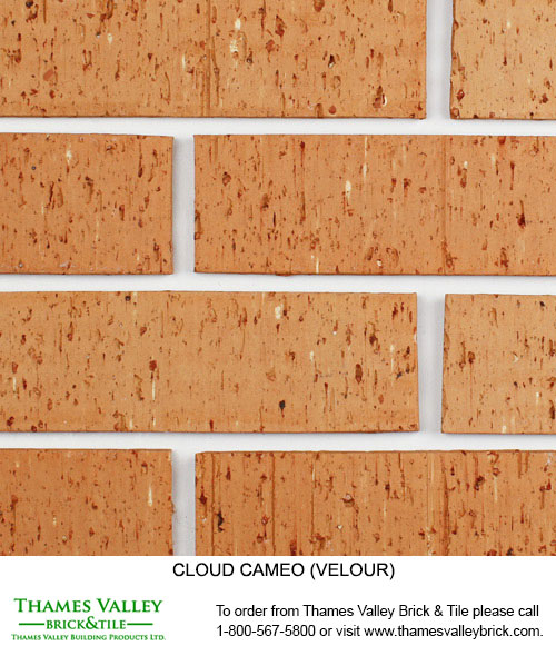 Cameo - Cloud Ceramics Facebrick - Buff tan brick