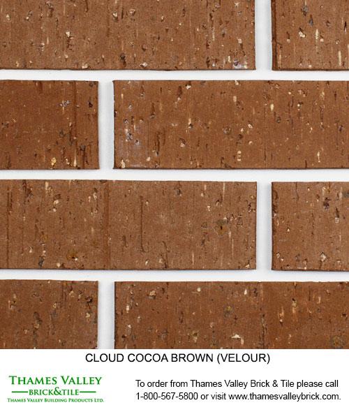 Cocoa - Cloud Ceramics Facebrick - Brown Brick
