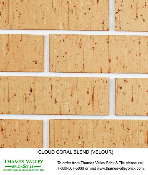 Coral - Cloud Ceramics Facebrick - Buff tan brick