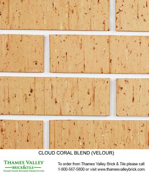 Coral - Cloud Ceramics Facebrick - Buff tan brick