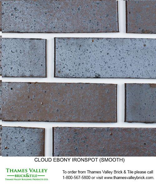 Ebony Ironspot - Cloud Ceramics Facebrick - black brick