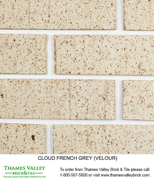 French Grey - Cloud Ceramics Facebrick - Grey Brick