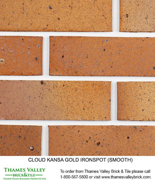 Kansa Gold Ironspot - Cloud Ceramics Facebrick - Brown Brick