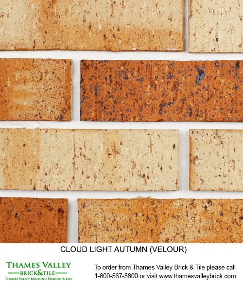 Light Autumn - Cloud Ceramics Facebrick - Buff tan brick
