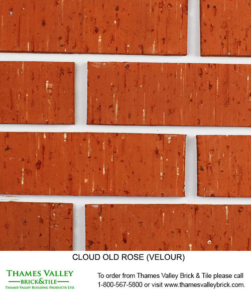 Old Rose - Cloud Ceramics Facebrick - Buff Tan Brick