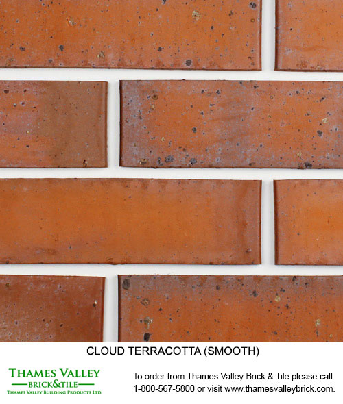 Terracotta - Cloud Ceramics Facebrick - Brown Brick