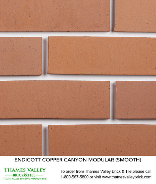 Copper Canyon - Endicott Facebrick