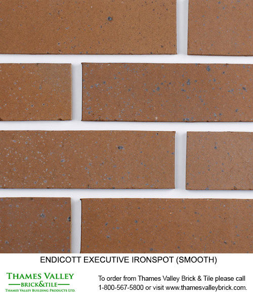Executive Ironspot - Endicott Facebrick - Brown Brick
