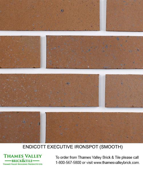 Executive Ironspot - Endicott Facebrick - Brown Brick