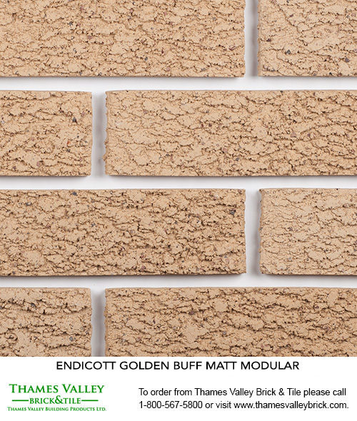 Golden Buff - Endicott Facebrick - Buff tan brick