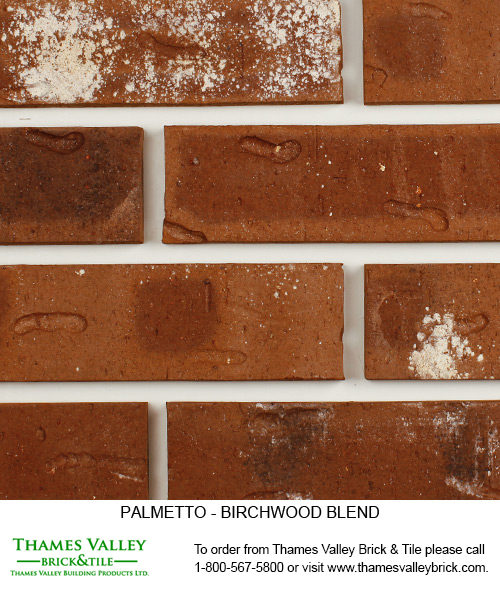 Birchwood Blending - Palmetto Facebrick - Brown Brick