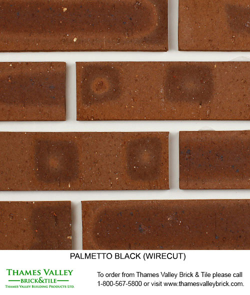 Black Wirecut - Palmetto Facebrick - Brown Brick