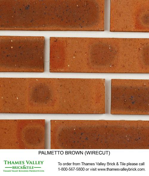 Brown Wirecut - Palmetto Facebrick - brown brick
