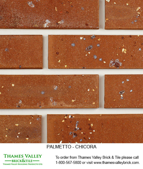 Chicora - Palmetto Facebrick - Brown Brick