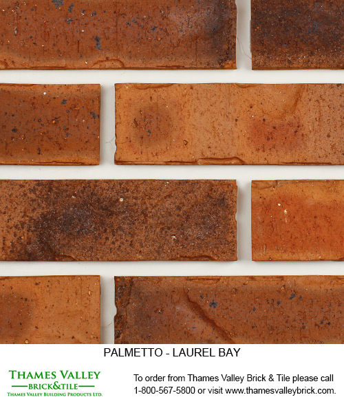 Laurel Bay - Palmetto Facebrick - Brown Brick