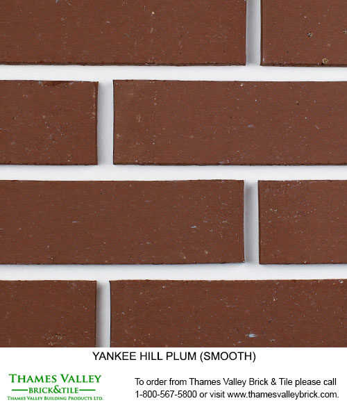 Plum - Yankee Hill Facebrick - Red Brick
